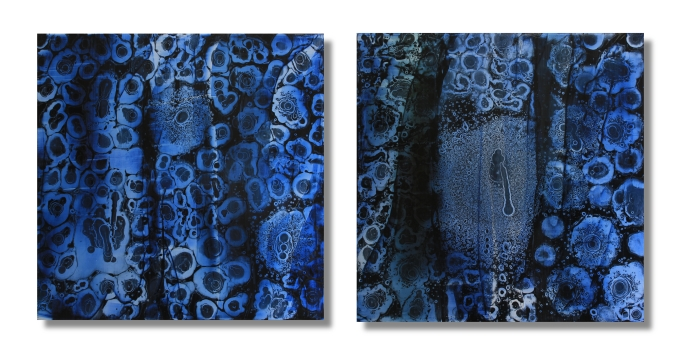 In The Long Distance Of The Night Sky (Diptych)